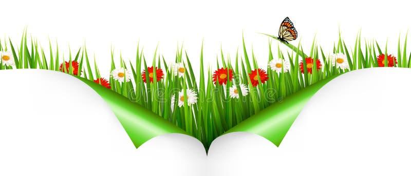 Fond de ressort avec des fleurs images stock