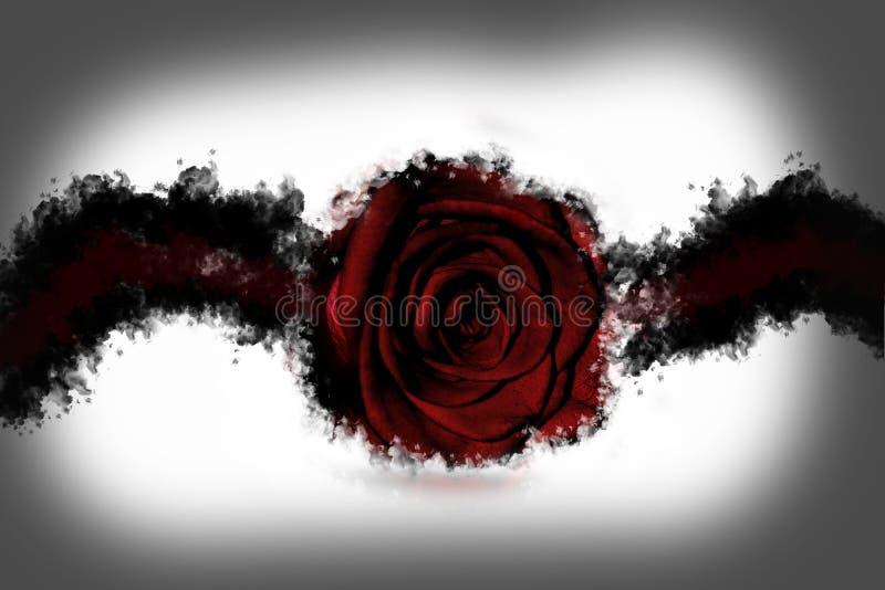 Fond de Rose photos stock
