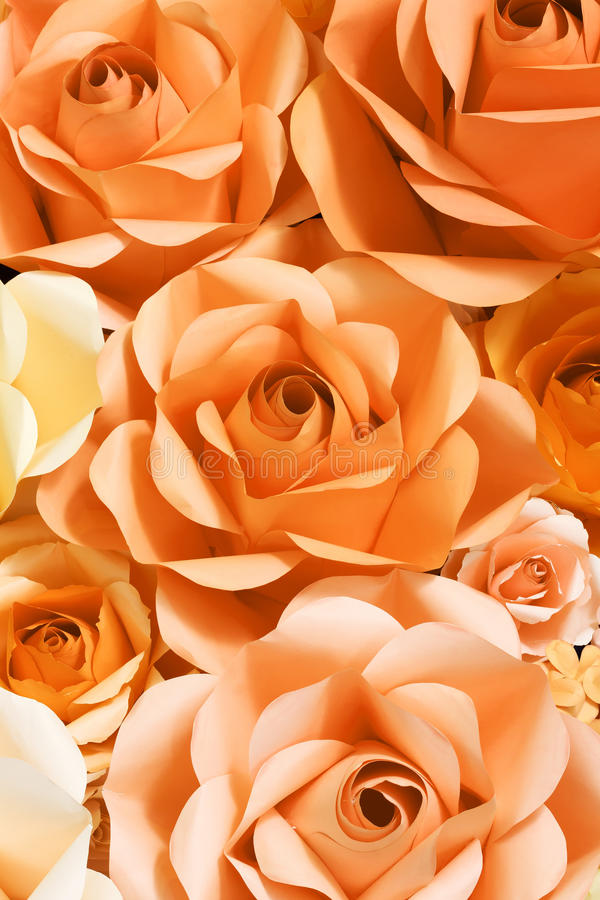 Fond de Rose de papier image stock