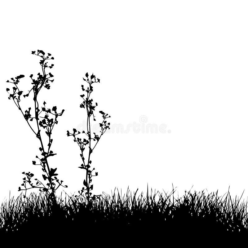 Fond de silhouette d'herbe et de centrales illustration libre de droits
