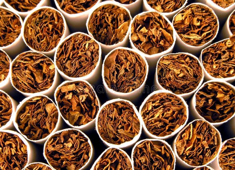 Fond De Tabac Photo stock