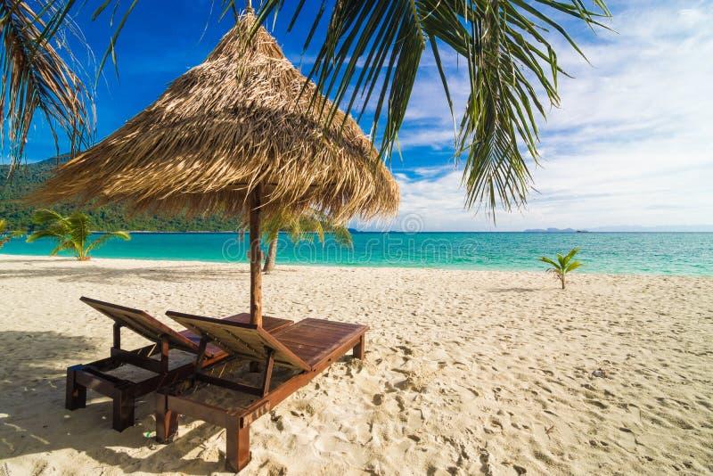 Fond de temps de vacances de deux chaises longues de plage sous l'herbe photos libres de droits
