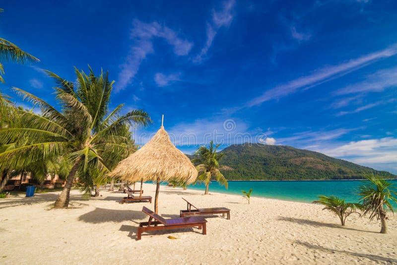 Fond de temps de vacances de deux chaises longues de plage sous l'herbe photo libre de droits