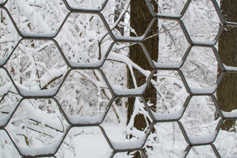 Fond de texture abstrait de fin décorative de parc d'hiver de With Snow In de barrière de fer  photos libres de droits