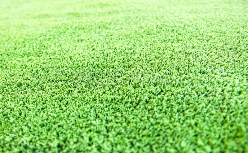 fond de texture de plancher de gazon d'herbe verte photographie stock
