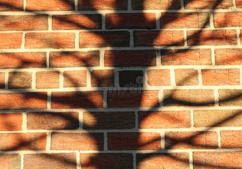 Fond de texture de silhouette d'arbre de mur de briques photos libres de droits