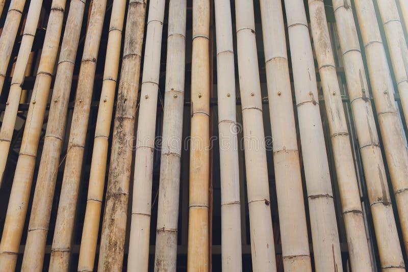 Fond de texture mur ou de barri?re en bambou de bambou photo stock