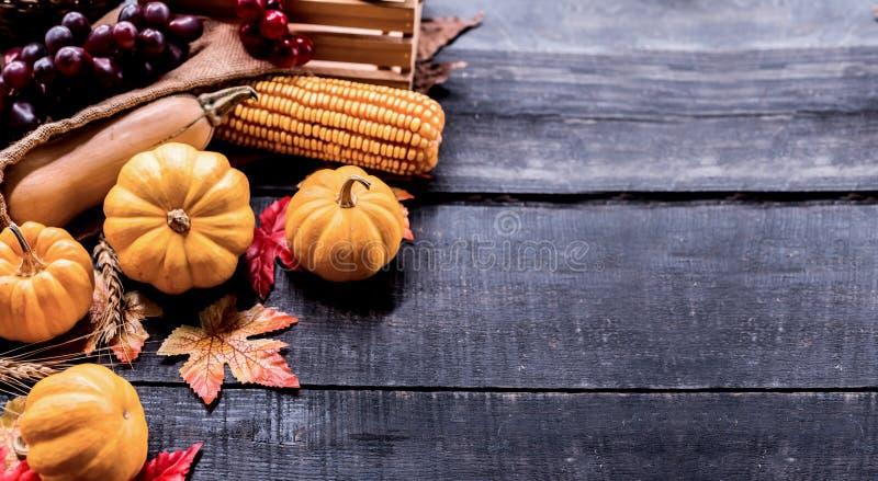 Fond de thanksgiving avec des fruits et l?gumes image libre de droits