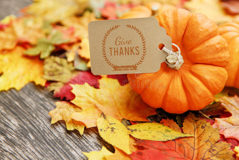 Fond de thanksgiving de chute photo libre de droits