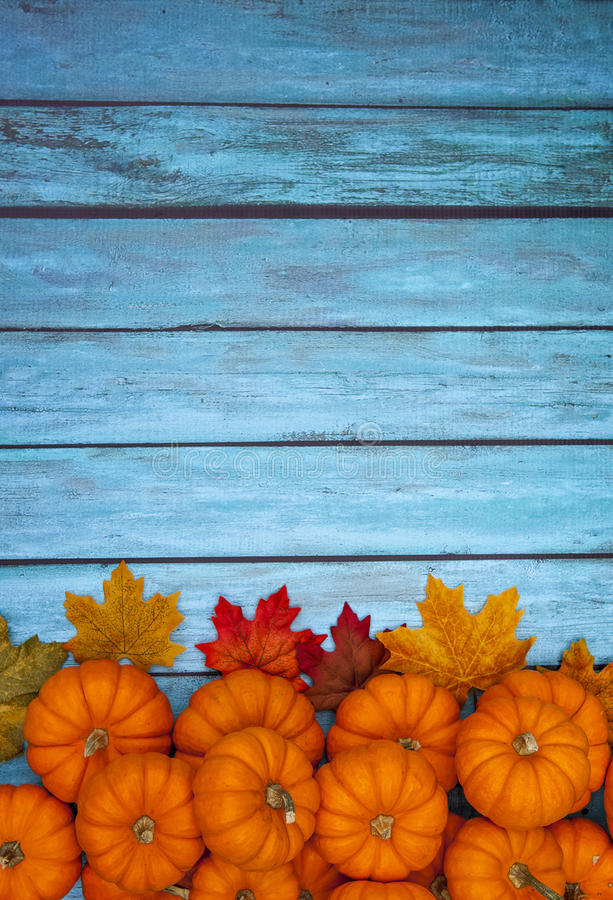 Fond de thanksgiving de potiron d'automne images stock