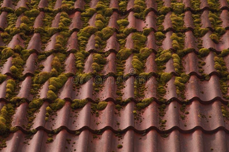 Fond de toit de tuile rouge texture envahie de toit images libres de droits