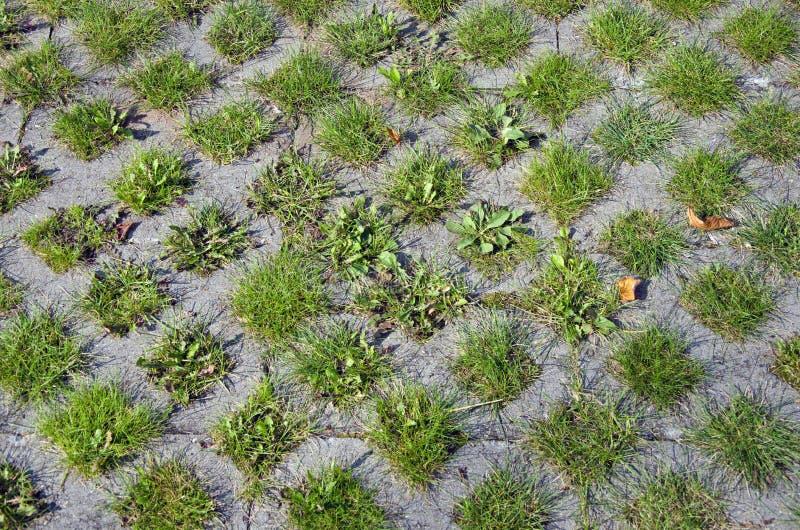 Fond de trottoir de béton et d'herbe images libres de droits