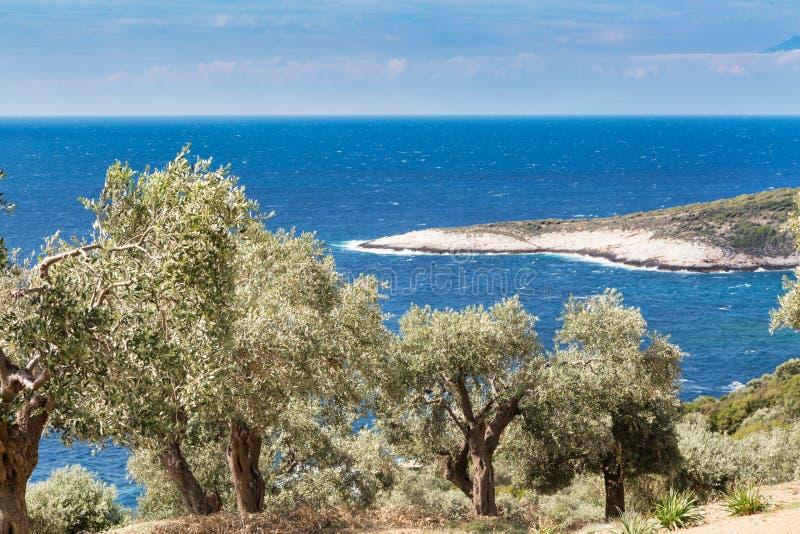 Fond de vacances d'été avec l'île grecque Thasos, les oliviers et la mer, Grèce photographie stock