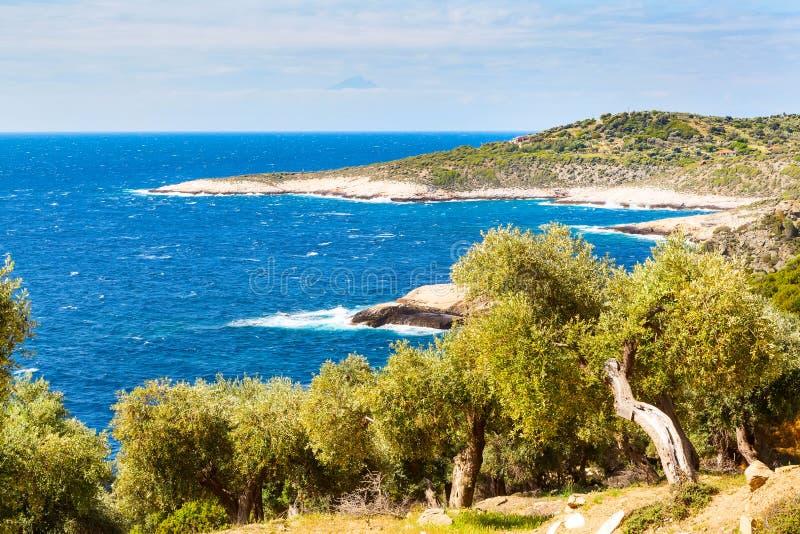 Fond de vacances d'été avec l'île grecque Thasos, les oliviers et la mer, Grèce photos libres de droits