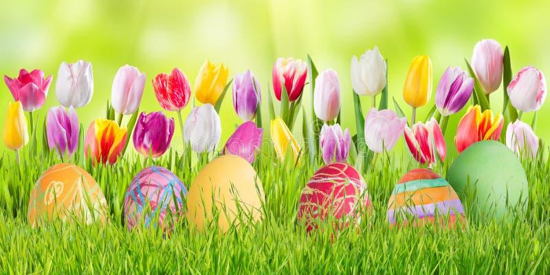 Fond de vacances de nature de Pâques photo libre de droits