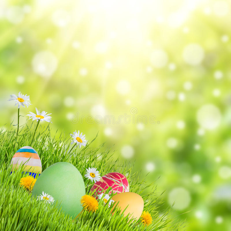 Fond de vacances de nature de Pâques image stock