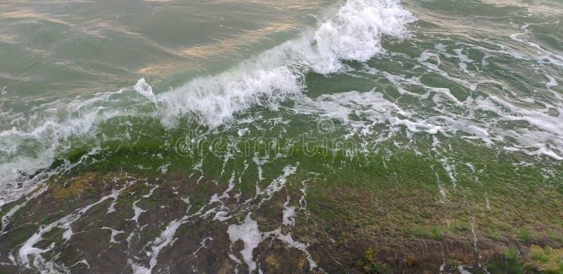 Fond de vagues de mer verte photo stock