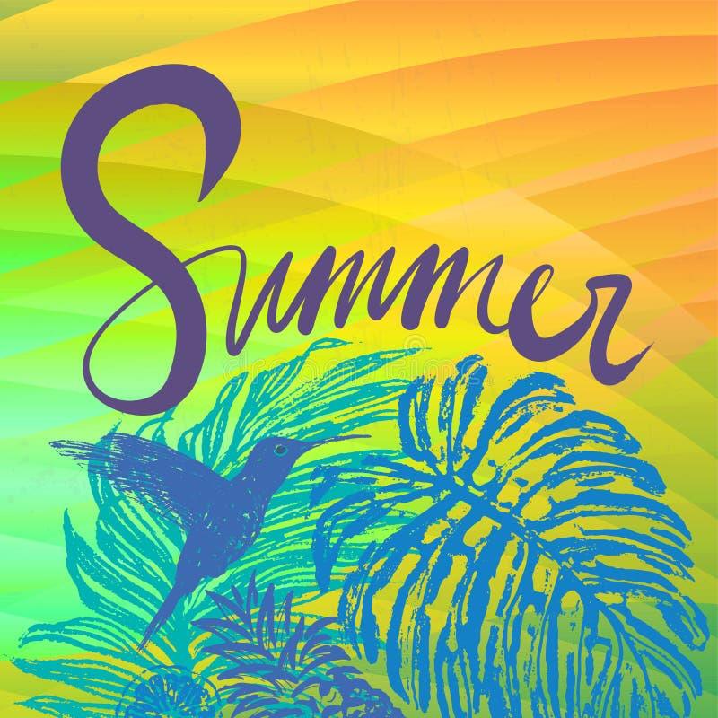 Fond de vecteur d'été avec la flore et le colibri tropicaux illustration stock