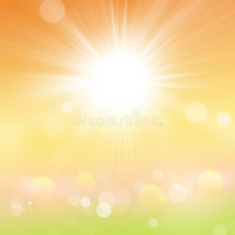 Fond de verts de jardin d'agrément d'été de ressort de nature brouillé par résumé avec l'éclat et le Bokeh de Sun illustration libre de droits