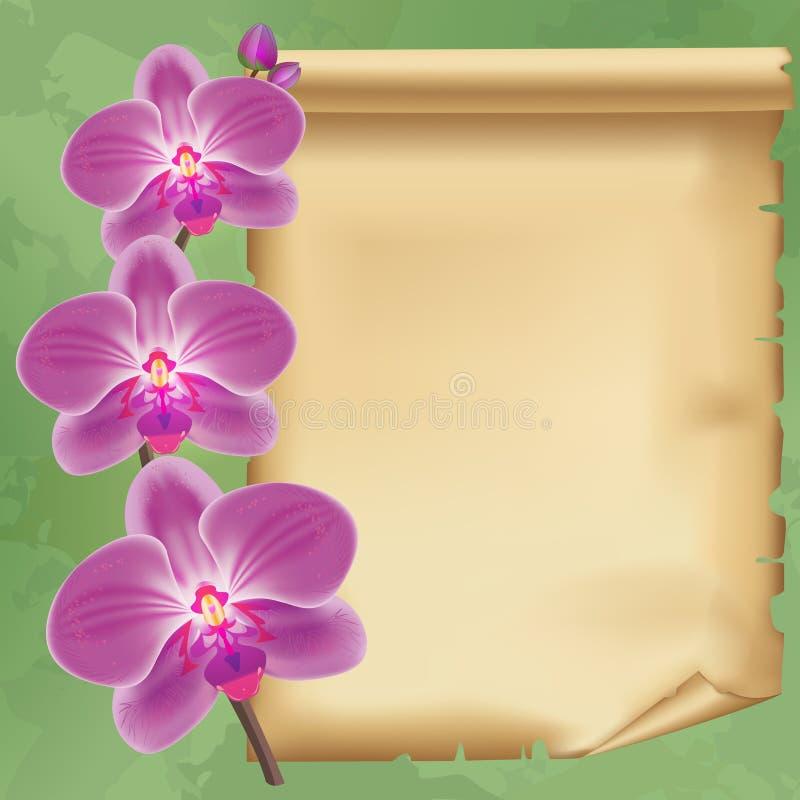 Fond de vintage avec l'orchidée et le papier de fleur illustration stock