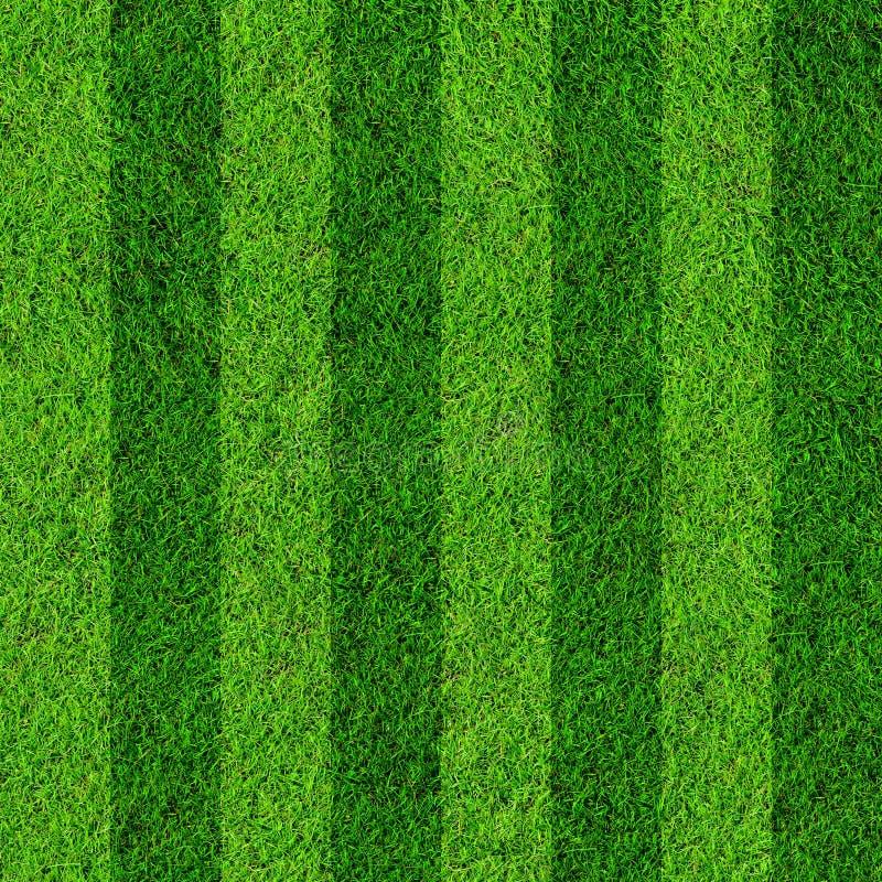 Fond de zone d'herbe illustration de vecteur