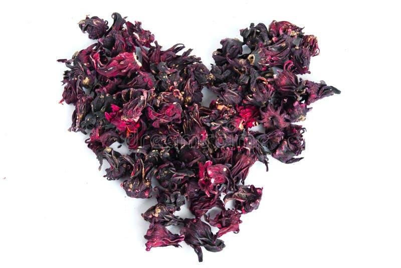 Fond des fleurs des calices de Roselle image stock