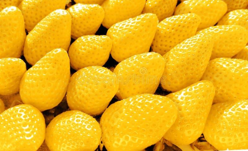 Fond des fraises fraîchement JAUNES, directement en haut images stock