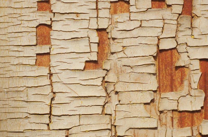 Fond des planches en bois texturisées âgées et superficielles par les agents avec vieux photo libre de droits
