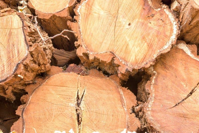Fond des rondins empilés de coupe en bois images stock