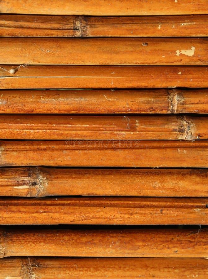 fond des roseaux en bambou secs image libre de droits