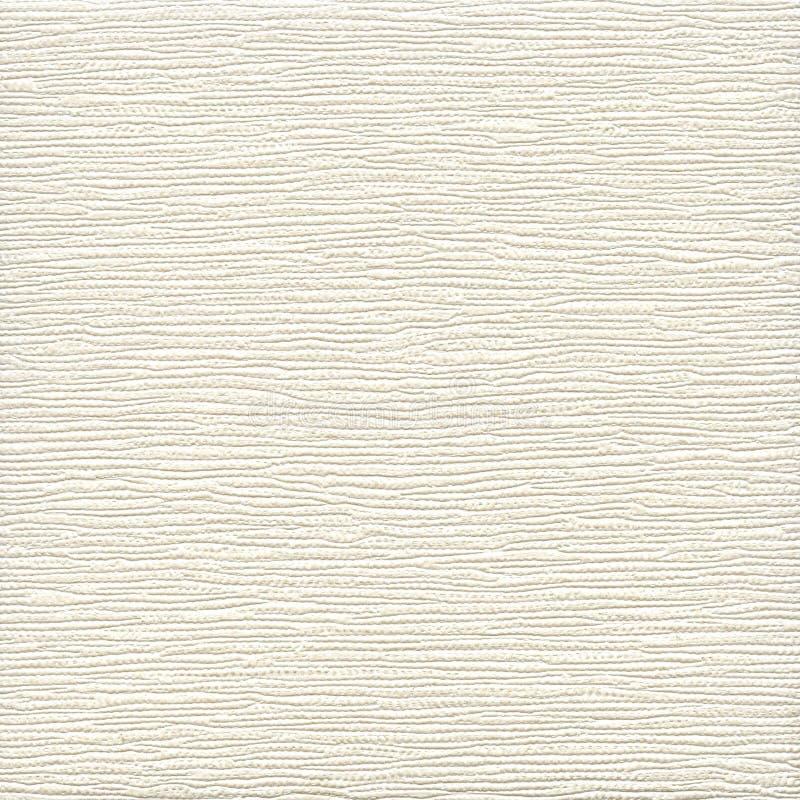 Fond du cuir brut blanc de texture de toile images libres de droits