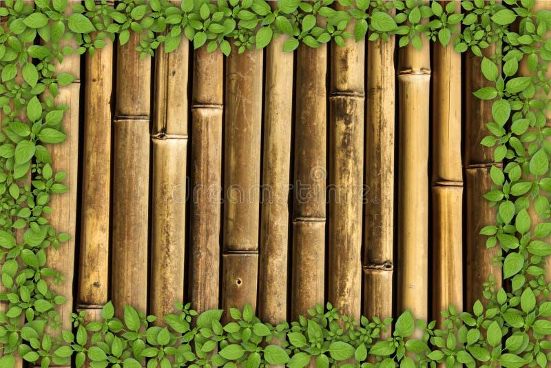 fond en bambou avec le cadre de plante verte image stock image du centrale image 25853353. Black Bedroom Furniture Sets. Home Design Ideas