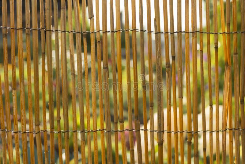 fond en bambou de texture de barrière ou de mur pour l'intérieur ou la conception extérieure photos stock