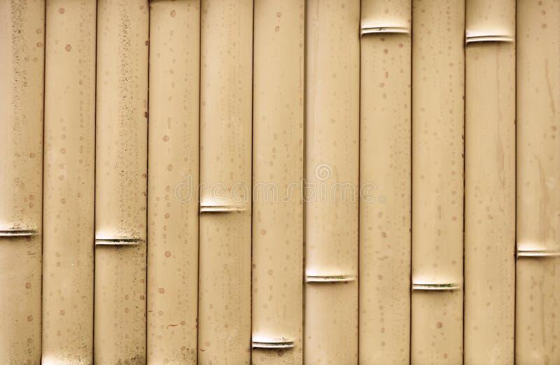 Fond en bambou de texture de barri?re images stock
