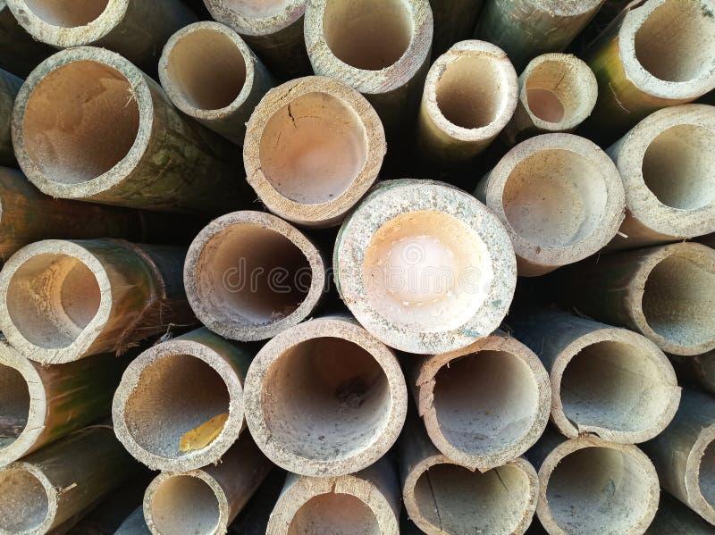 Fond en bambou de texture de trou photographie stock