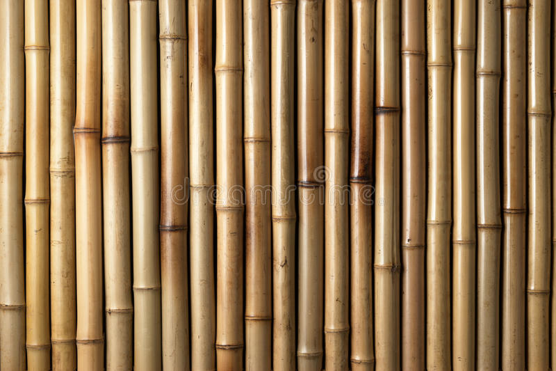 Fond en bambou en bois images libres de droits