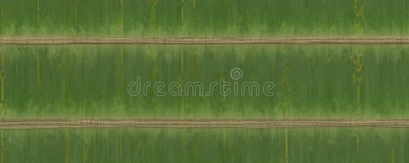 Fond en bambou vert plat de texture photographie stock