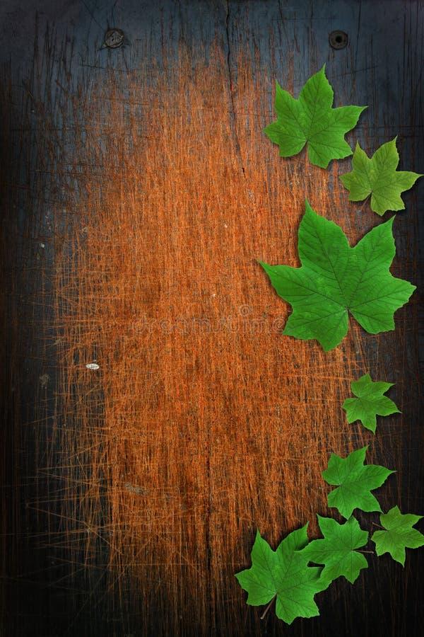 Fond en bois avec la lame photos libres de droits