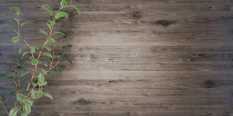 Fond en bois avec une illustration de l'usine 3D illustration stock