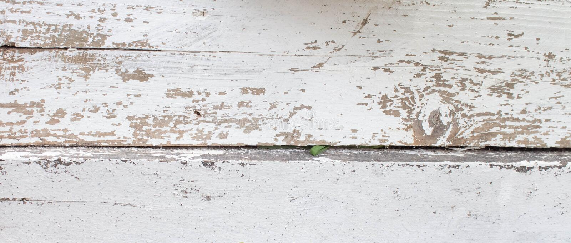 Fond en bois blanc avec la vieille peinture, fissures, usures L'espace sous le texte Vieux tron?on dans le lait de chaux images libres de droits