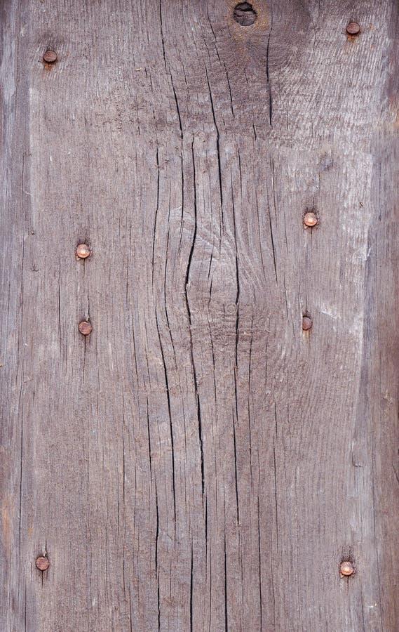 Fond en bois brun clair Texture de vieux conseils superficiels par les agents et rayés La vieille texture en bois brune avec les  images stock