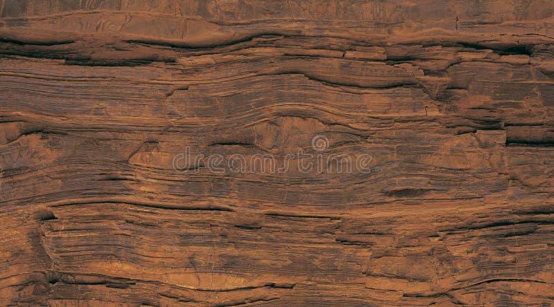 Fond en bois d'arbre avec la texture de cru images libres de droits