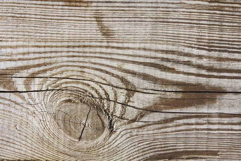 Fond en bois de bois de construction de grain de planche de texture, noeud en bois de bureau photos libres de droits