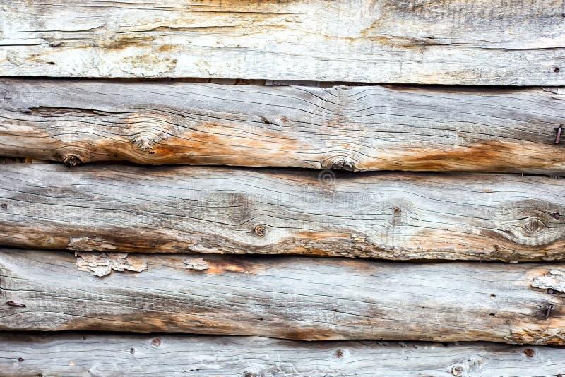 Fond en bois de logarithmes naturels photo stock
