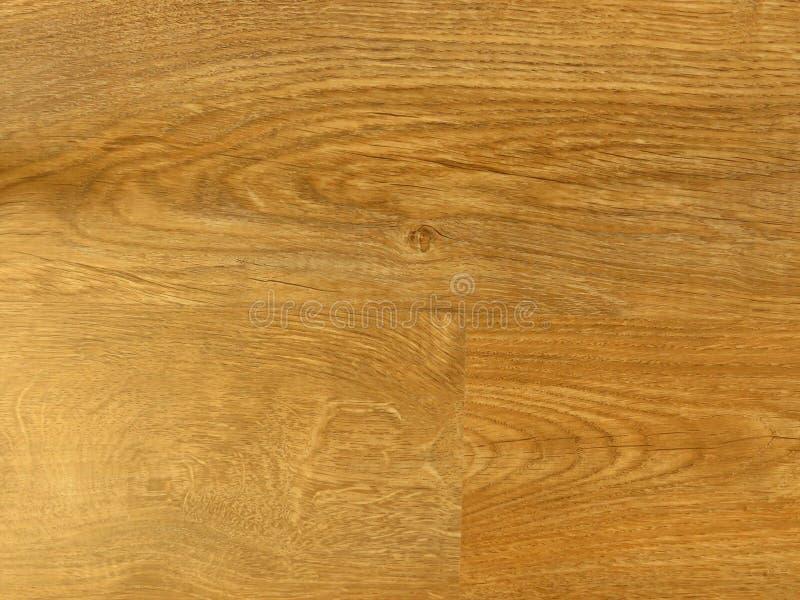 Fond en bois de modèle de texture de chêne fin Grain exquis en bois de chêne de conception photo stock