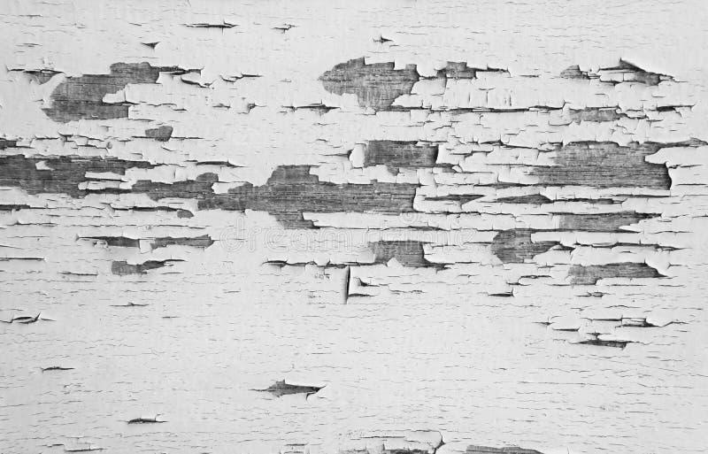 Fond en bois de mur de vieille planche La texture du vieux bois Morceau de bois superficiel par les agents images stock