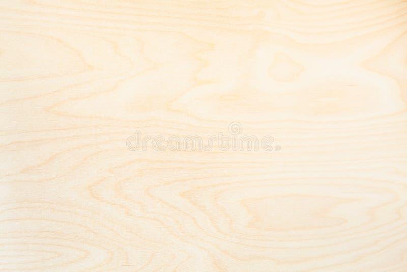 fond en bois de panneau naturel de bouleau photos libres de droits