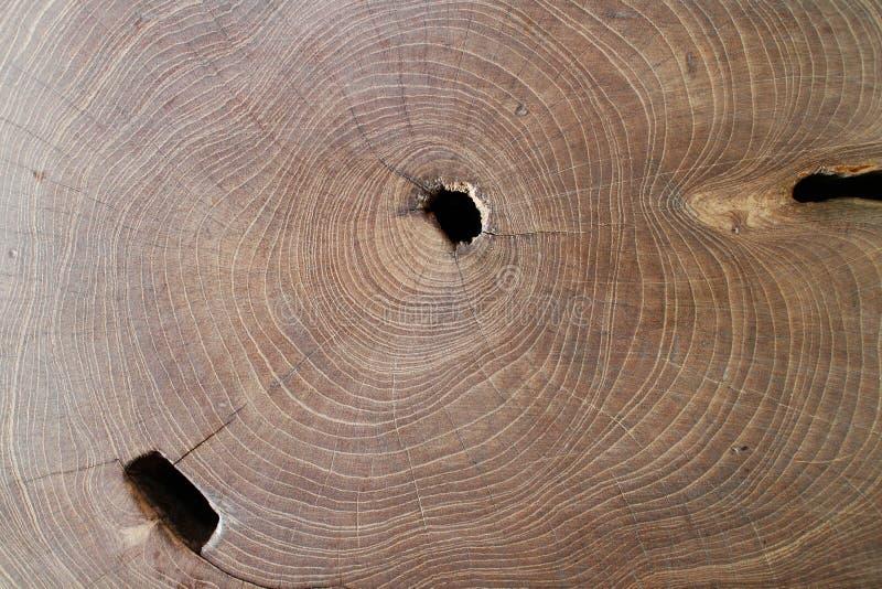 Fond en bois de texture, planches en bois Surface en bois foncée de fond de texture avec le vieux modèle naturel Texture en bois  image libre de droits
