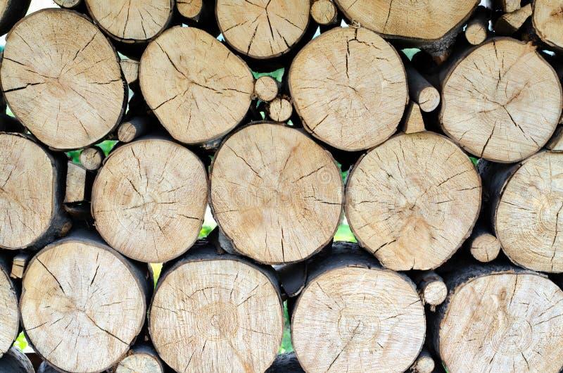 Fond en bois de tron?on images stock