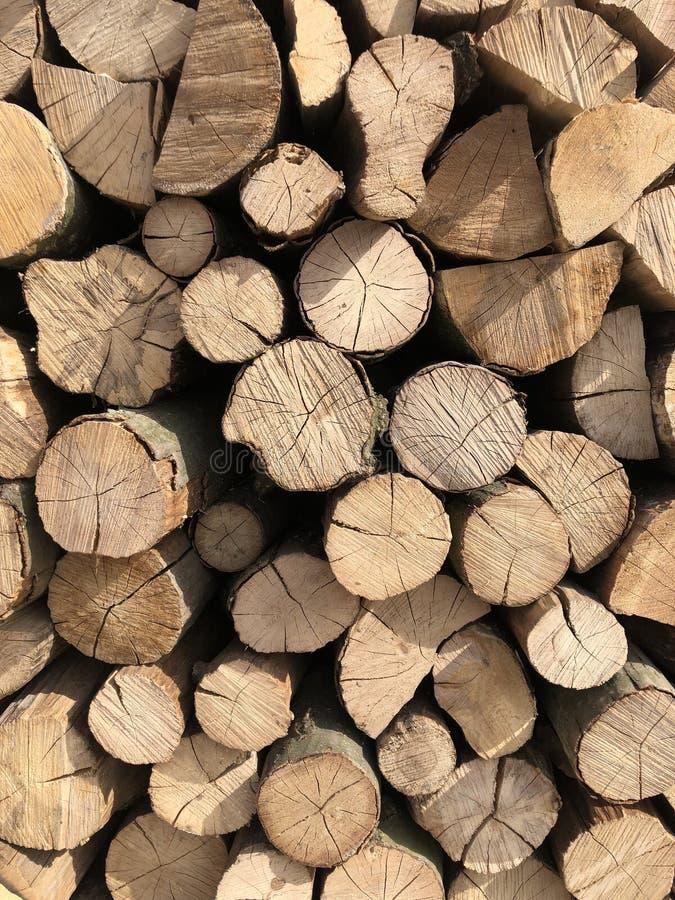 Fond en bois naturel Pile des rondins en bois images libres de droits